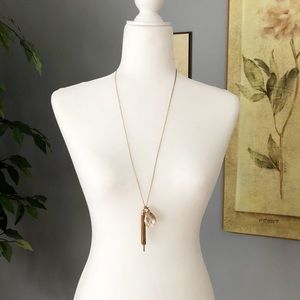 EXPRESS Gold Long Necklace